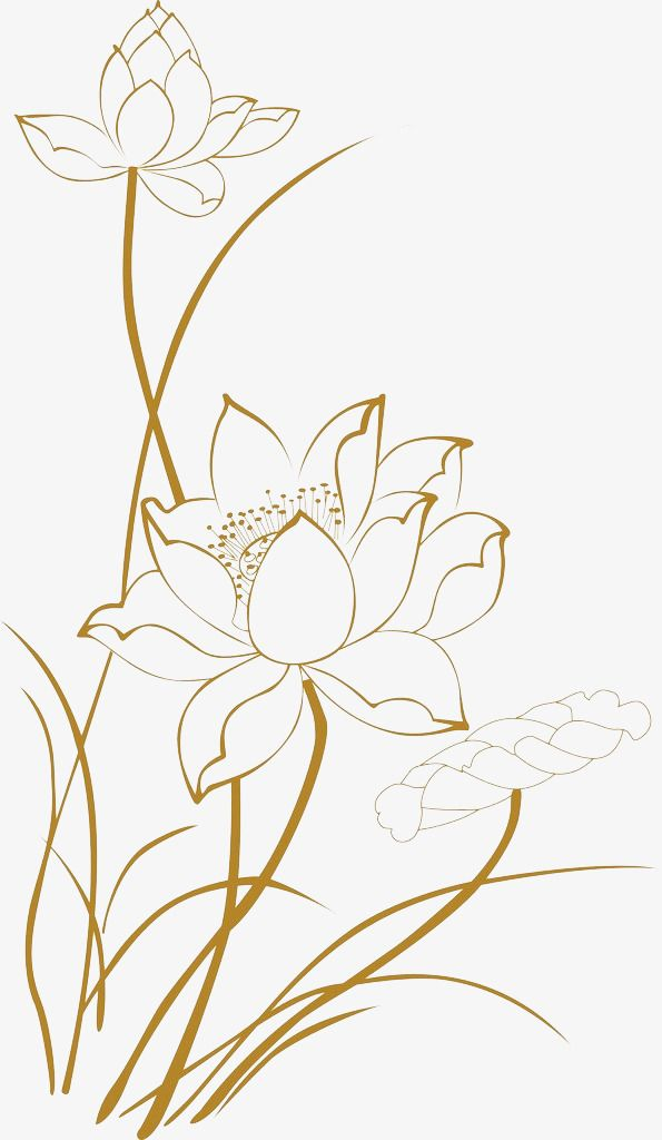 Thai style clipart svg royalty free download Lotus Line Drawings, Lotus Clipart, Line Clipart, Lotus PNG ... svg royalty free download