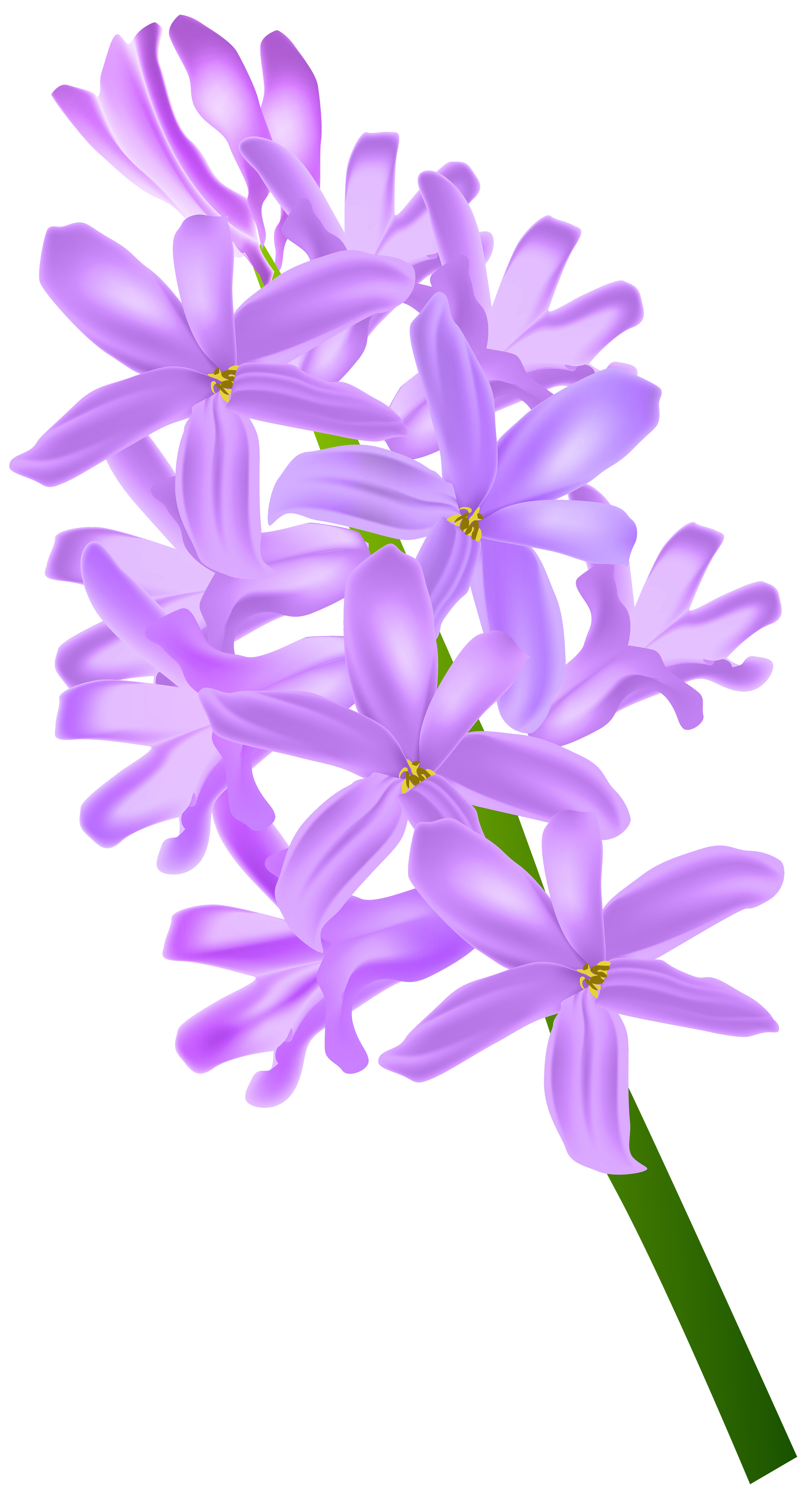 Thank you with hyacinth clipart