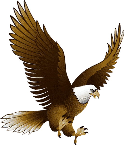 Thanksgiving clipart strength like an eagle clip art transparent download Eagle PNG image, free picture download | Eagles and Angels ... clip art transparent download