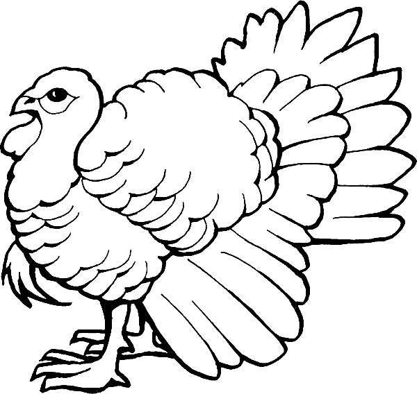 Turkey clipart coloring page picture royalty free library Coloring Pages: Turkey Coloring Pages Free and Printable picture royalty free library