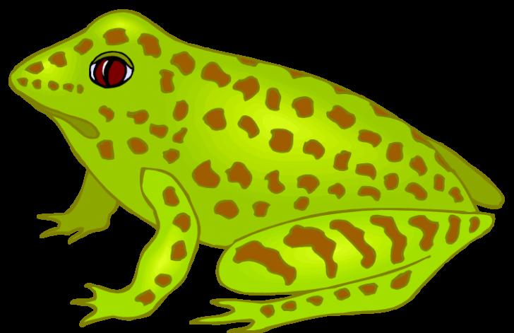 Thanksgiving frog clipart png transparent DIY Design pictures clip art Downloads ~ hatenylo.com png transparent