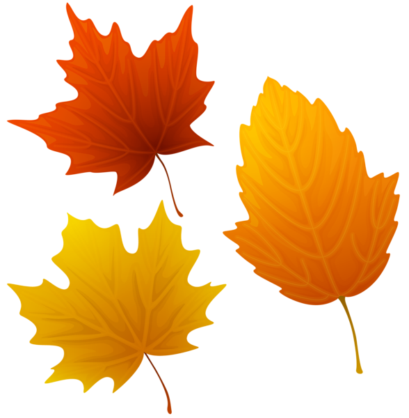 Thanksgiving leaves clipart clip art royalty free stock Set of Autumn Leaves Clipart PNG Image | Fall clip | Pinterest ... clip art royalty free stock