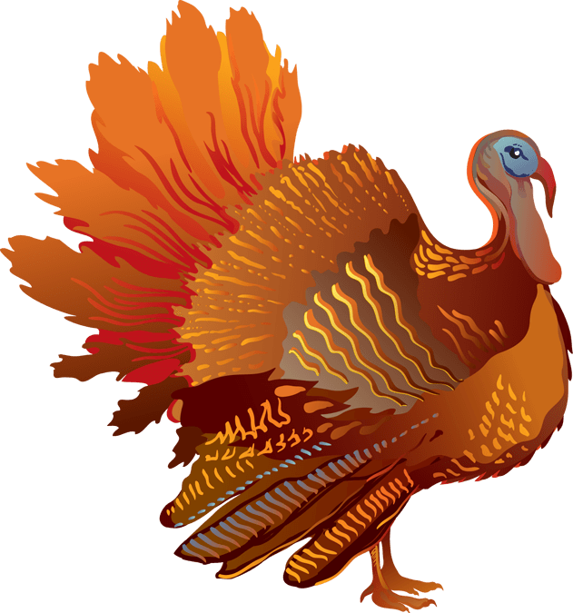 Turkey clipart side view banner stock Thanksgiving Sideview Turkey transparent PNG - StickPNG banner stock