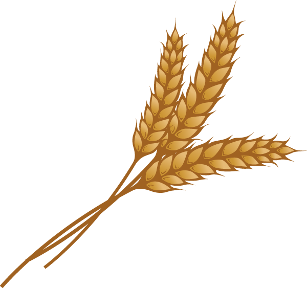 Thanksgiving wheat clipart royalty free stock 28+ Collection of Wheat Clipart Images | High quality, free cliparts ... royalty free stock