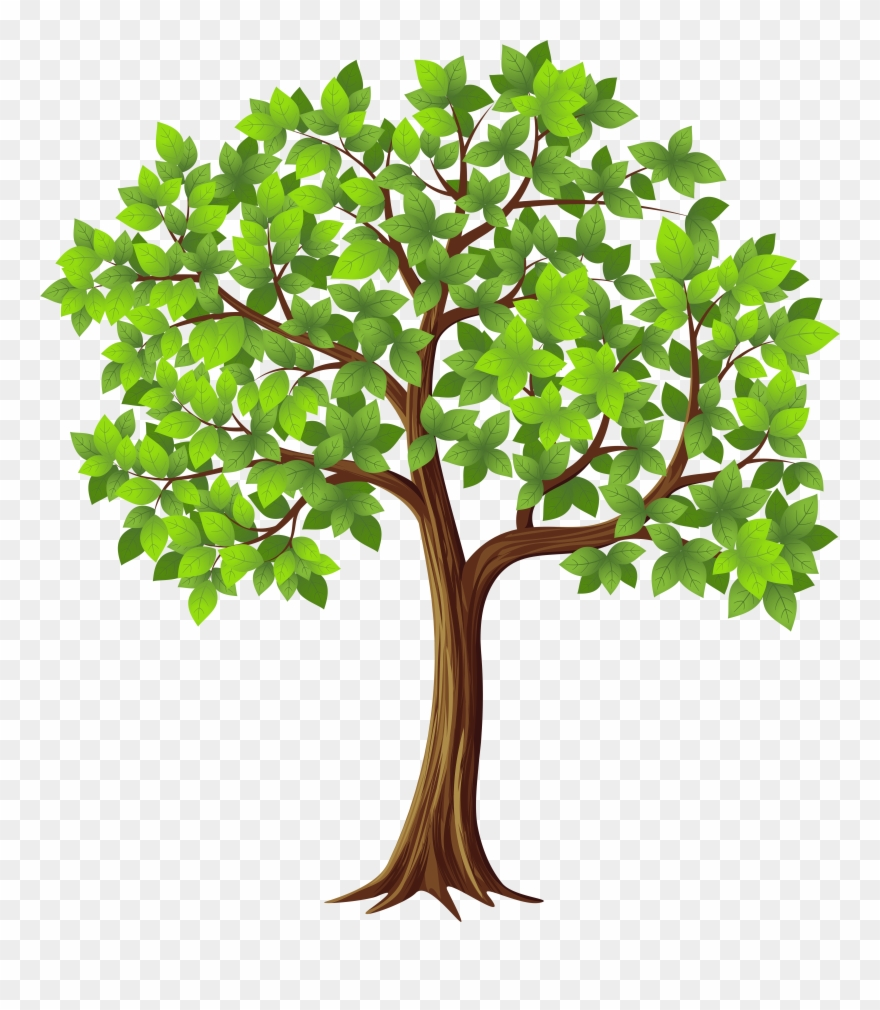 Tree clipart free download graphic freeuse stock Transparent Tree Cliparts Free Download Clip Art - Fig Tree ... graphic freeuse stock