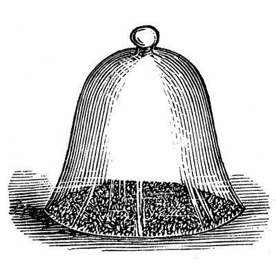 The bell jar clipart jpg royalty free Vintage Garden Clip Art - Glass Cloche - Bell Jar | Outydse ... jpg royalty free