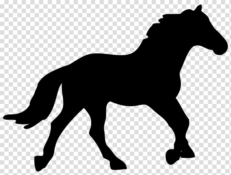 The canter model clipart vector freeuse stock American Quarter Horse Canter and gallop Silhouette ... vector freeuse stock