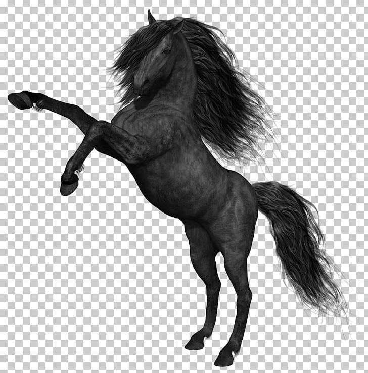 The canter model clipart graphic free stock Mustang Black PNG, Clipart, Animals, Black, Black And White ... graphic free stock