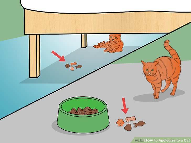 The cat sat under the table clipart jpg library How To Apologize To A Cat (with Pictures) #337519 ... jpg library