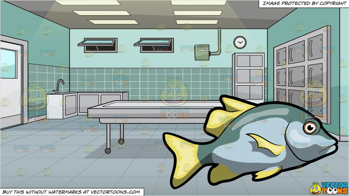 The galley fish bone clipart clipart library download A Virginalis Blotch Fish and An Empty Morgue Background clipart library download