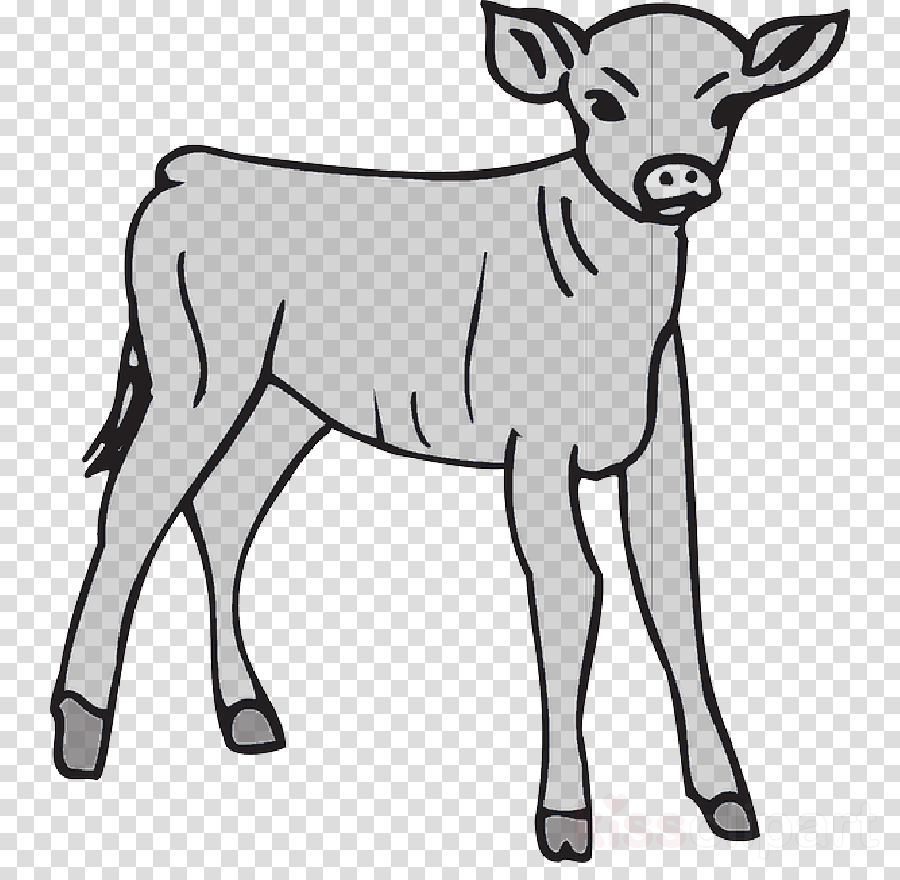 The golden calf clipart black and white banner free stock Calf, Coloring Book, Golden Calf, transparent png image ... banner free stock