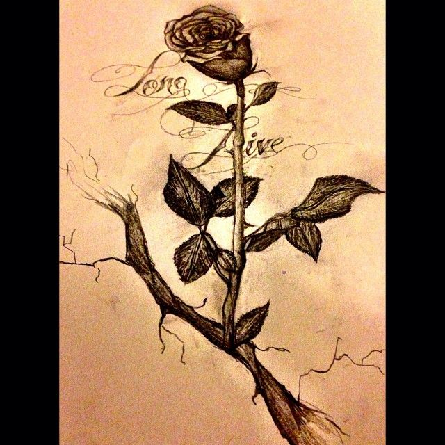 The rose that grew from concrete clipart graphic black and white Finally finished it....long live the rose that grew from ... graphic black and white