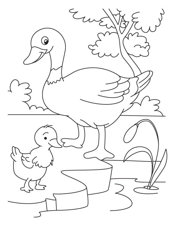 The ugly duckling clipart black and white png black and white stock Download duck and duckling coloring pages clipart The Ugly ... png black and white stock