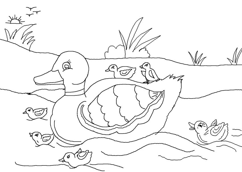 The ugly duckling clipart black and white svg free stock Download ugly duckling colouring pages clipart The Ugly ... svg free stock