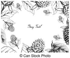 Thimbleberry clipart transparent download Thimbleberry Vector Clip Art Illustrations. 10 Thimbleberry ... transparent download