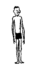 Thin clipart picture free download Skinny And Fat People Clipart - Clipart Kid picture free download