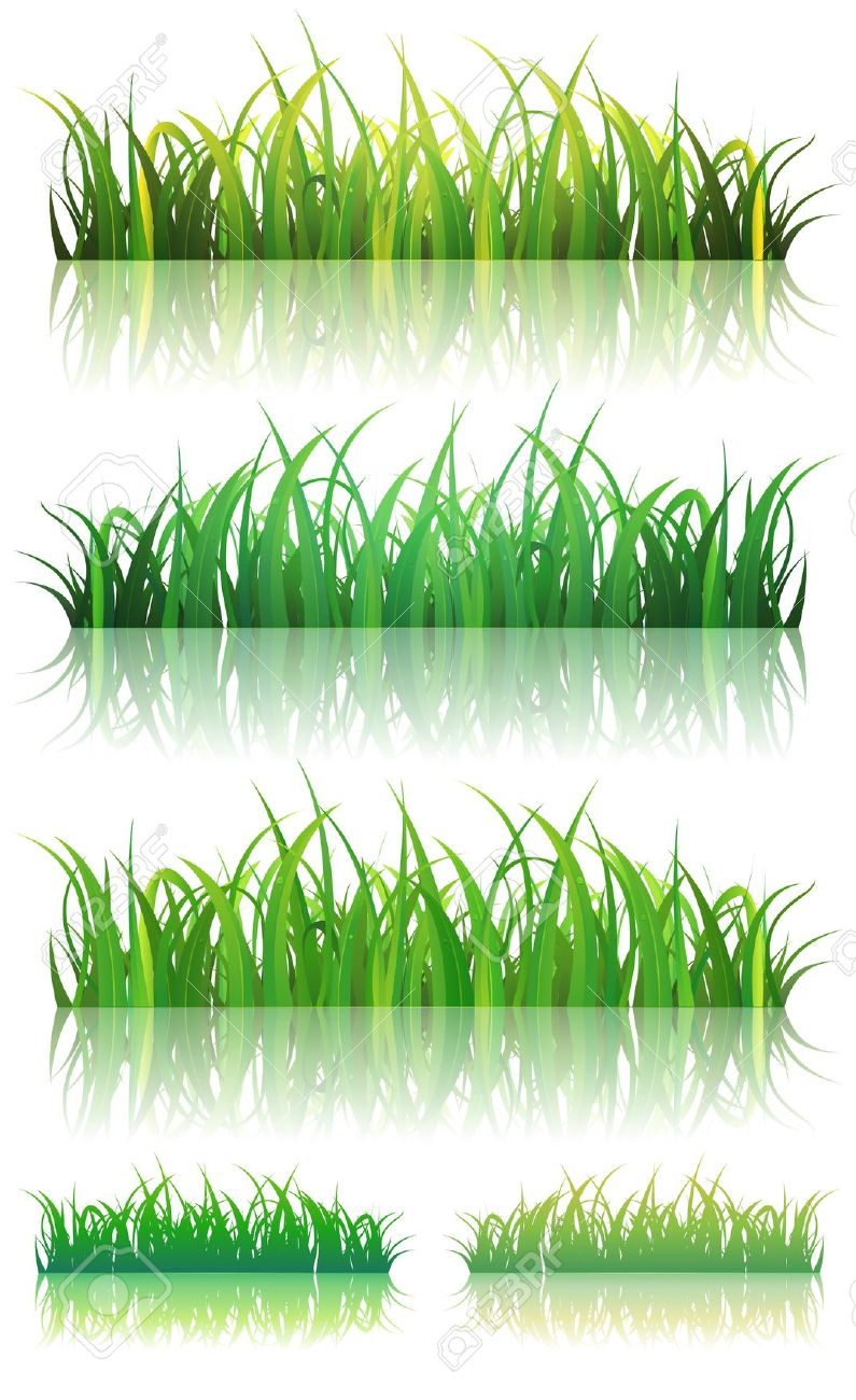 Thin grass clipart graphic download Illustration Of A Set Of Thin Leaves And Glossy Green Grass ... graphic download