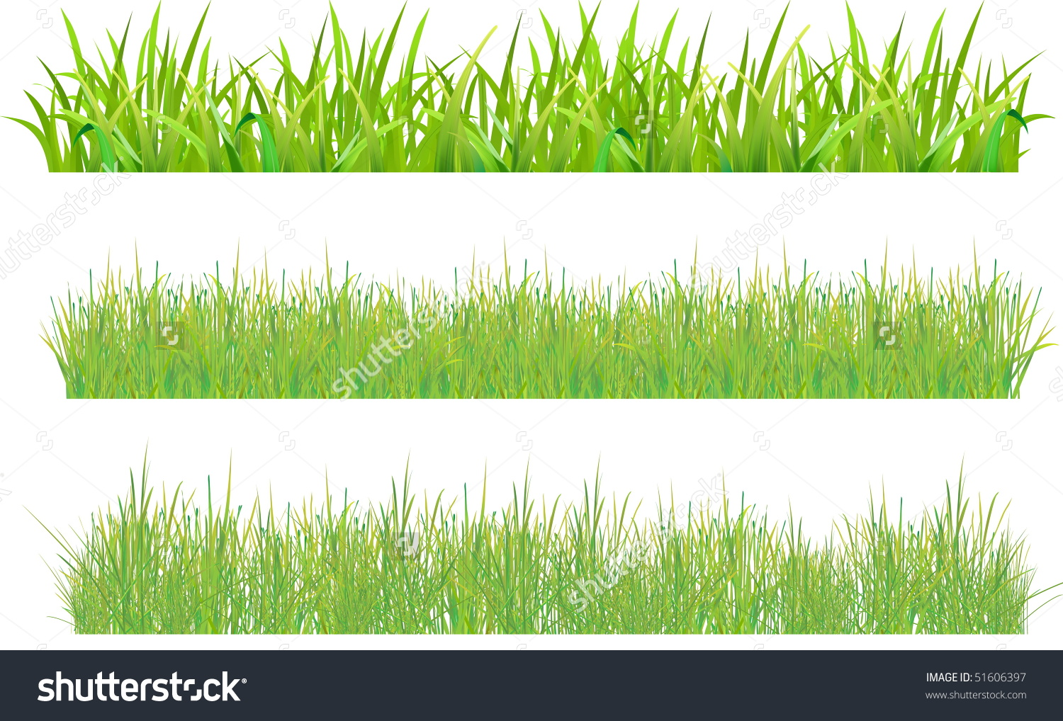 Thin grass clipart clip library Thick blades of grass clipart - ClipartFest clip library