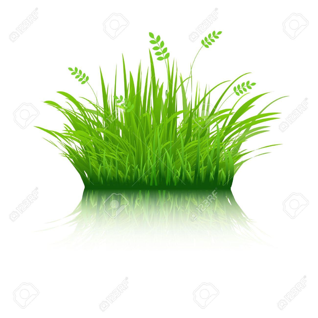 Thin grass clipart clip transparent download Thin Grass Clip Art – Clipart Free Download clip transparent download