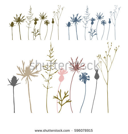 Thin grass clipart clipart royalty free stock Vector Illustration Wild Meadow Flowers Herbs Stock Vector ... clipart royalty free stock
