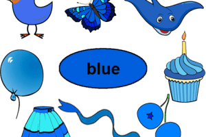 Things that are blue in color clipart clip art library Things that are blue in color clipart » Clipart Portal clip art library