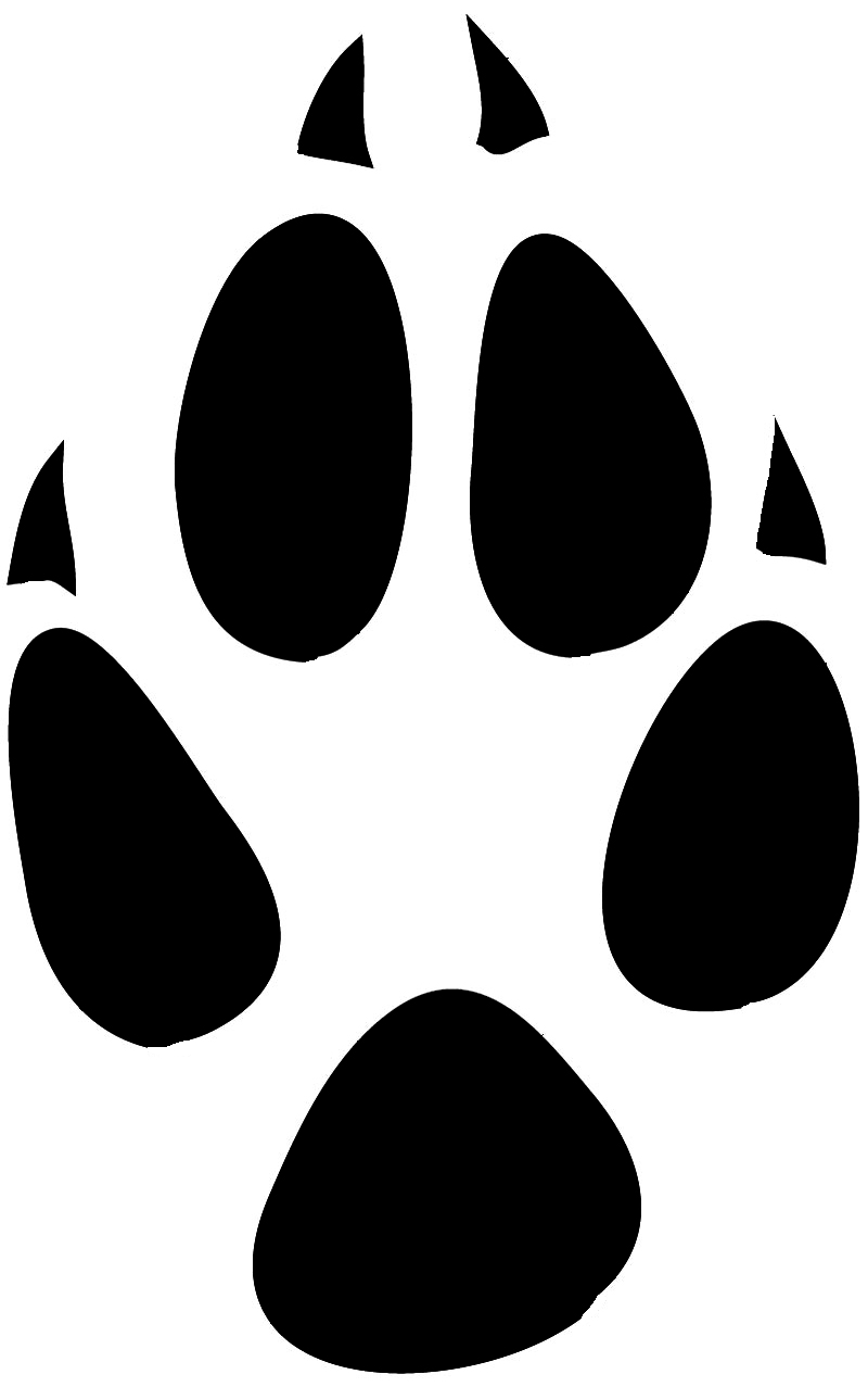 This guy paws clipart image library download Lion Paw Print Clipart   Free download best Lion Paw Print ... image library download