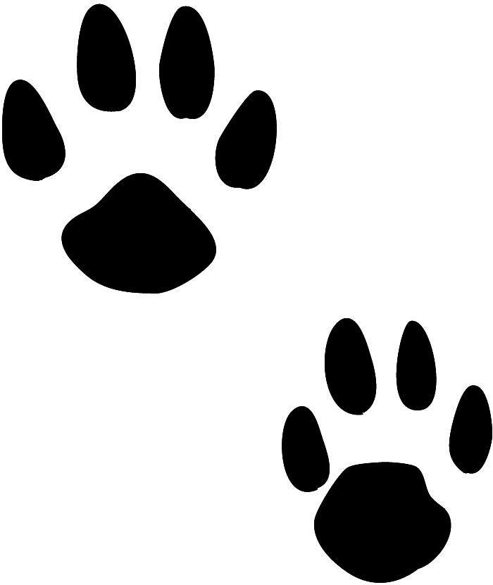 This guy paws clipart clip library library Lion Paw Print Clipart   Free download best Lion Paw Print ... clip library library