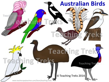 This is home cliparts banner freeuse Australia Clipart Birds banner freeuse