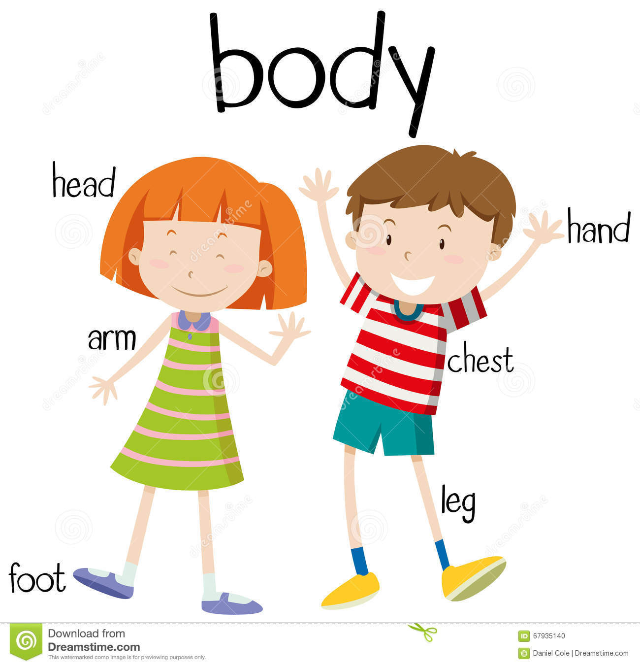 This is my body clipart graphic Body clipart my body, Body my body Transparent FREE for ... graphic