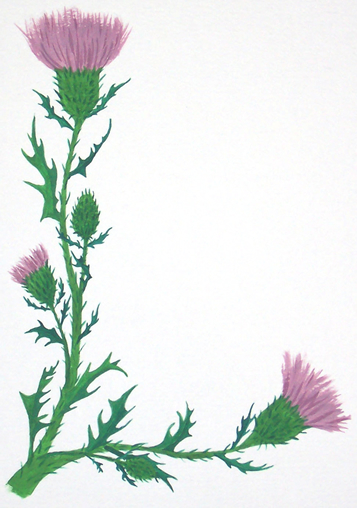 Thistle clipart scotland clip black and white Free Thistle Cliparts, Download Free Clip Art, Free Clip Art ... clip black and white