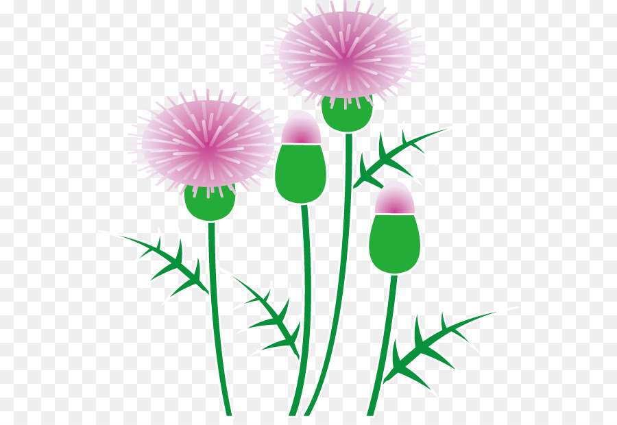 Thistle clipart free royalty free Green Flowers Border Design png download - 614*611 - Free ... royalty free