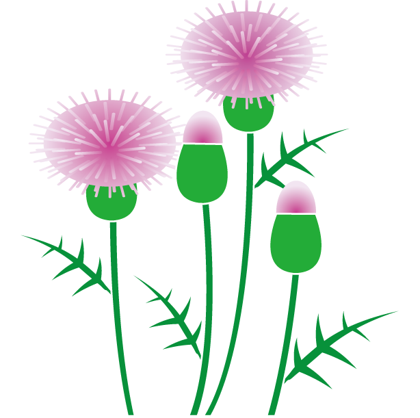 Thistle clipart images clipart black and white stock Free Thistle Cliparts, Download Free Clip Art, Free Clip Art ... clipart black and white stock