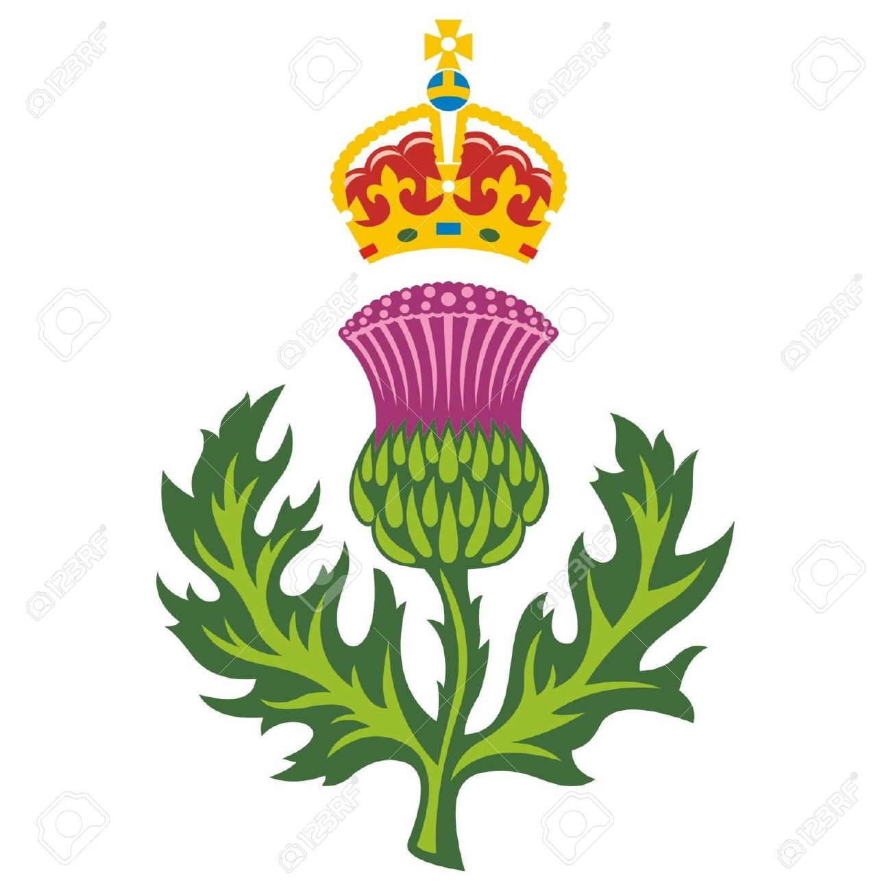 Thistle clipart scotland jpg royalty free library Scottish thistle clipart 9 » Clipart Station jpg royalty free library