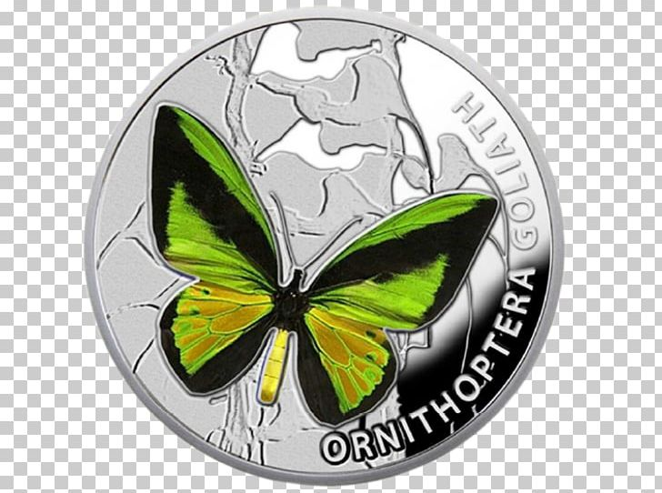Thopter clipart picture royalty free stock Butterfly Silver Coin Niue Dollar Australian One Dollar Coin ... picture royalty free stock