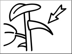 Thorn clipart clip free Clip Art: Basic Words: Thorn B&W Unlabeled I abcteach.com ... clip free