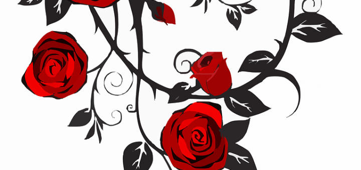 Thorn in the flesh clipart banner freeuse download The Power of a Thorn - Christian Article Bank banner freeuse download