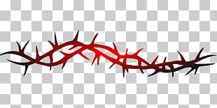 Thorn vine clipart picture free Thorn Vine Drawing | Free download best Thorn Vine Drawing ... picture free
