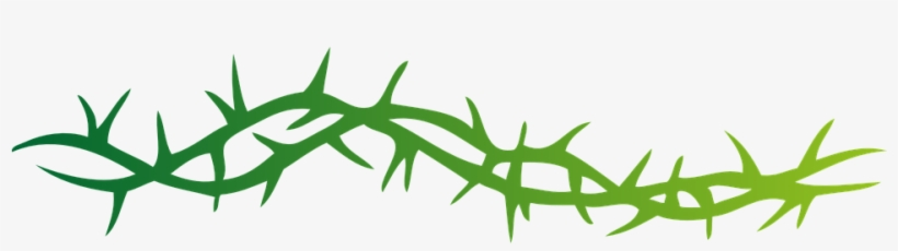Thorn vine clipart image freeuse library Thorny Vines Png - Rose Forever Thorned: From A Thorn Comes ... image freeuse library