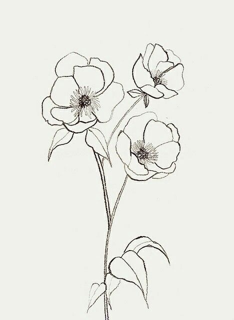 Three simple flowers clipart tatto jpg black and white download Flor 3 | clip art flowers | Simple flower drawing, Flower ... jpg black and white download
