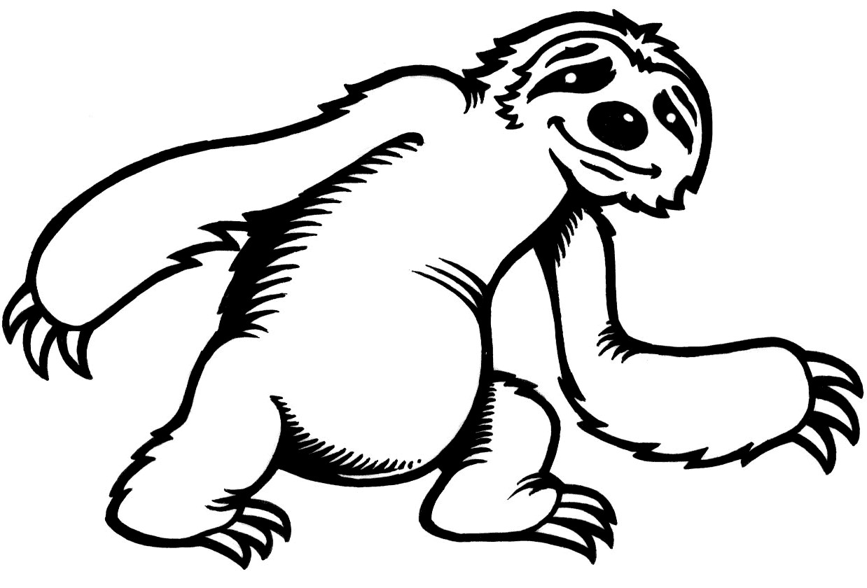 Three toed sloth clipart kids banner library library Three Toed Sloth Drawing | Free download best Three Toed ... banner library library