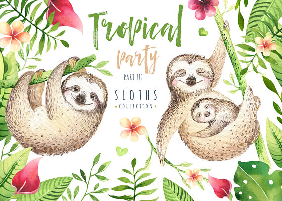 Three toed sloth clipart kids clip art transparent download Watercolor greenery animals clipart. Digital kids ... clip art transparent download