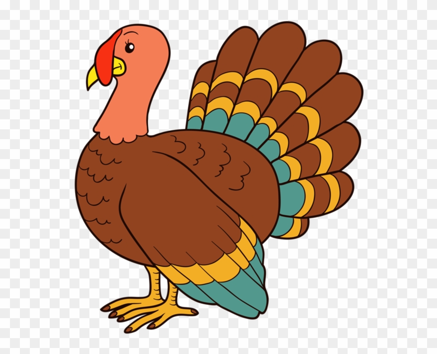Thurkey clipart transparent stock Shadow Of A Turkey Clipart (#4903129) - PinClipart transparent stock