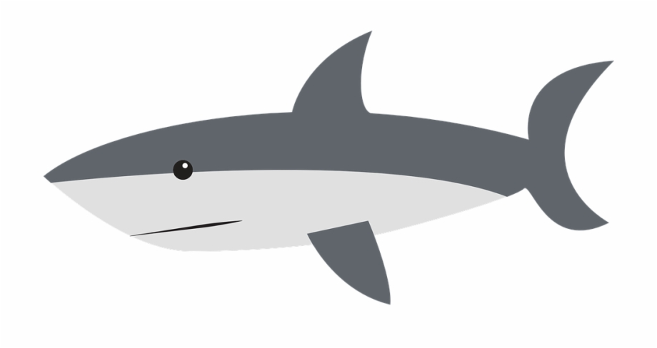 Tiburon free clipart picture library download Aleta Tiburon Png - Shark Clipart Free PNG Images & Clipart ... picture library download