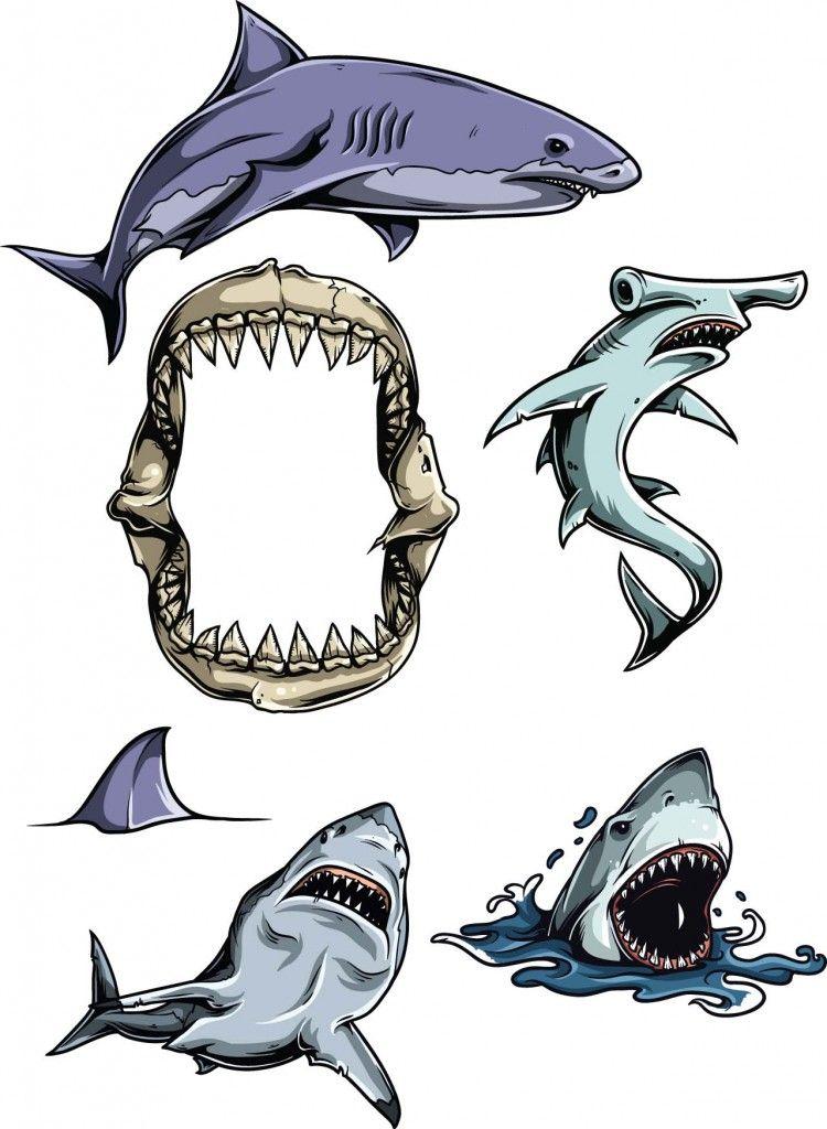 Tiburones clipart clip art freeuse library Sharks vector clipart set | tiburon | Tiburones, Logotipos y ... clip art freeuse library