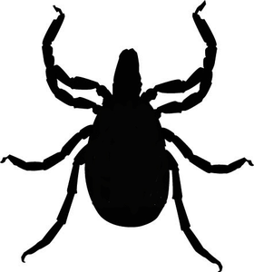 Tick bug clipart jpg library download Free Animal Ticks Cliparts, Download Free Clip Art, Free ... jpg library download