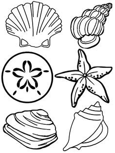 Tide pool creatures clipart black and white image transparent 191 Best Tide pools images in 2019   Marine life, Ocean ... image transparent