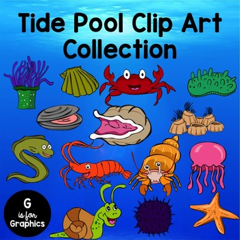 Tide pool creatures clipart black and white image royalty free library Tide Pool Clip Art image royalty free library