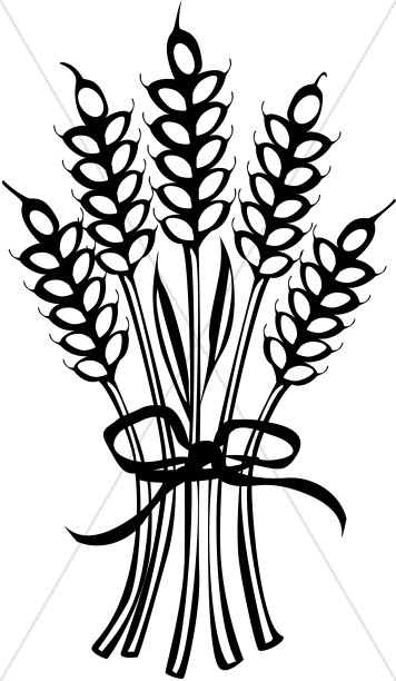 Tied black and white clipart jpg library library Wheat Tied with Ribbon | Thanksgiving Clipart jpg library library
