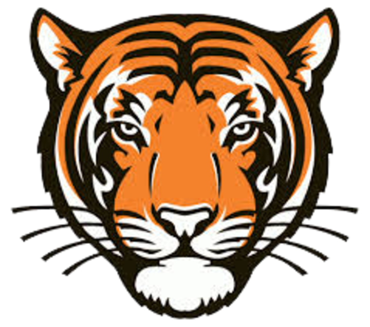 Tiger coming out of basketball clipart royalty free The Meigs County Tigers - ScoreStream royalty free