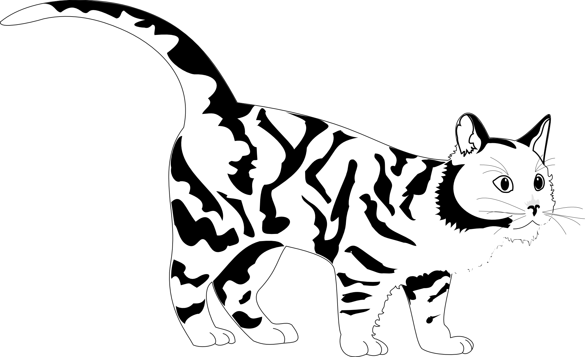 Tiger cat clipart jpg black and white library White Tiger Coloring Pages - Democraciaejustica jpg black and white library